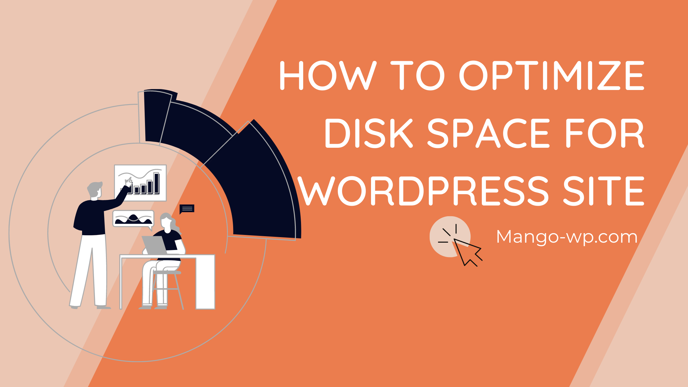 HOW TO OPTIMIZE Disk space for WordPress site